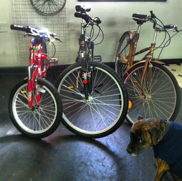 Cyclus Bike Shop Church Hill People S News Richmond